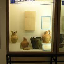 Vetrina Musei Civici di Reggio Emilia